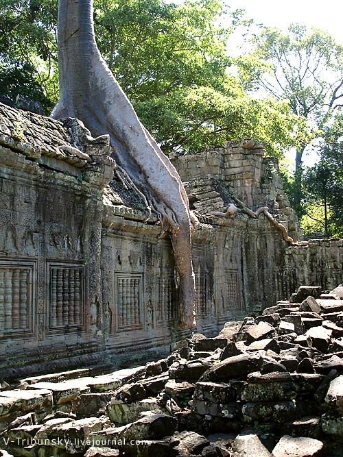 Храм и его убийца